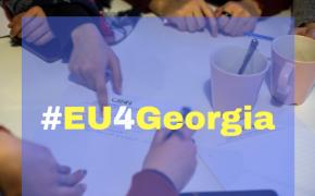 CENN მასპინძლობს ევროკავშირის მხარდაჭერით შექმნილი GALAG-ის გარემოსდაცვითი ჯგუფის სამუშაო შეხვედას